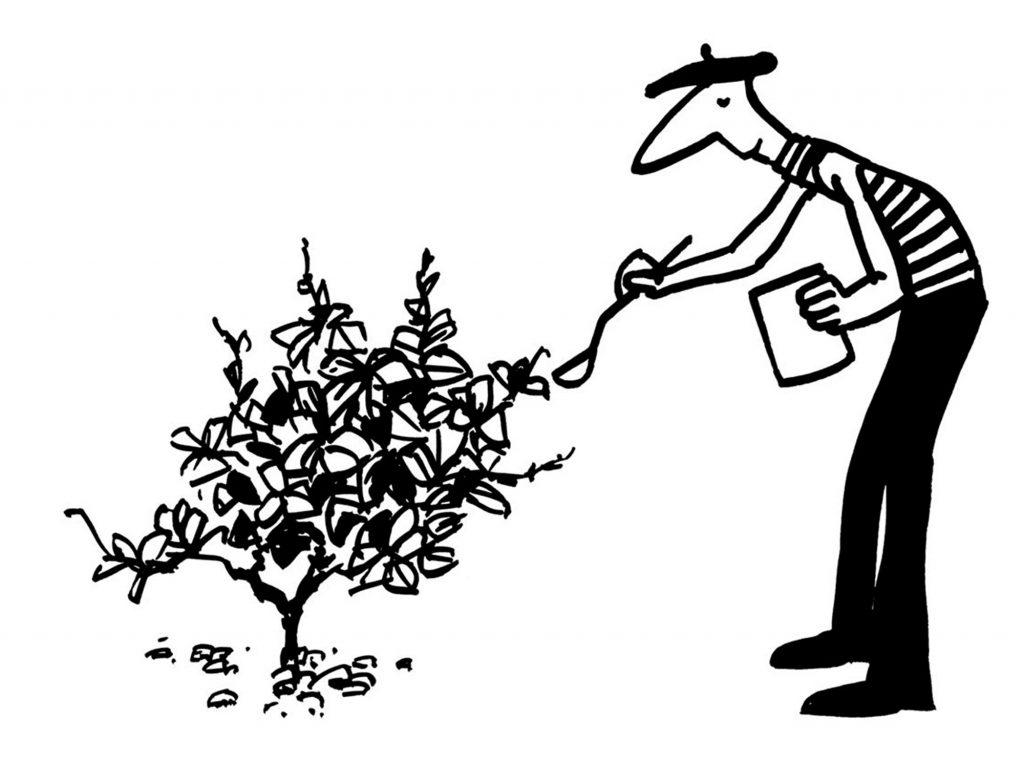 Vincent Grall vigneron la vigne